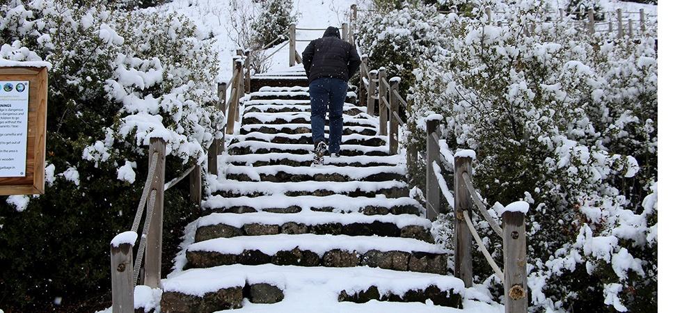Yanık ülkede karla gelen eşsiz güzellik