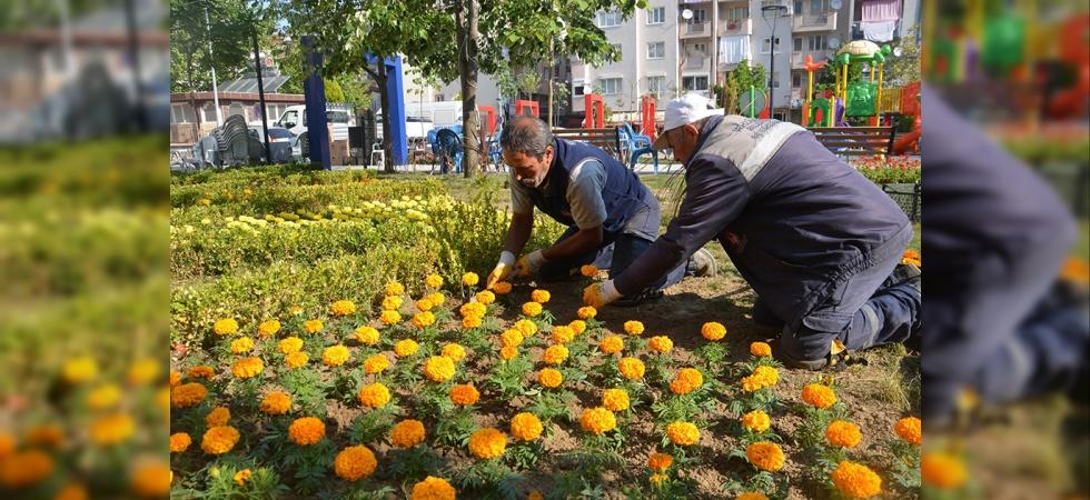 Şehzadeler 157 bin çiçekle renkleniyor
