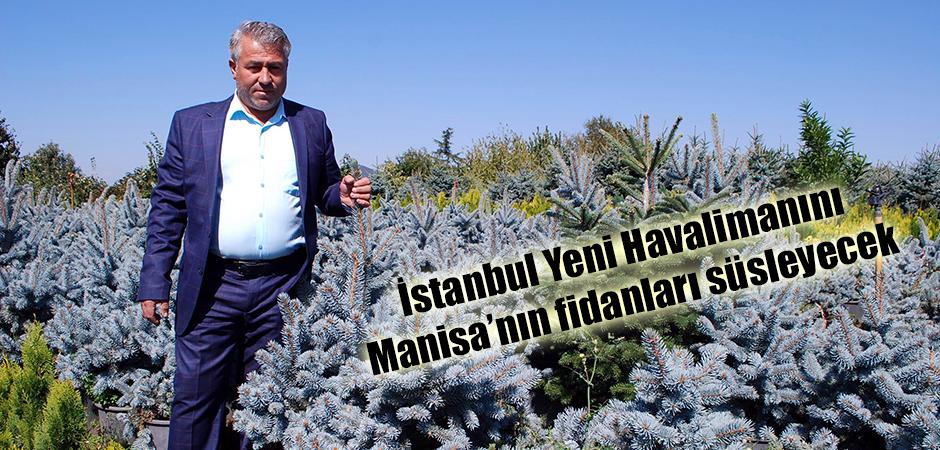 İstanbul Yeni Havalimanını Manisa'nın fidanları süsleyecek