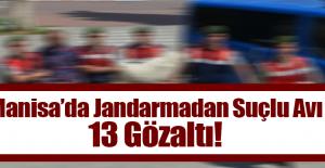 Manisa'da Jandarmadan Suçlu Avı 13 Gözaltı!
