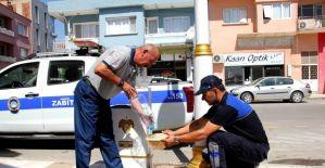 Sokak hayvanları için zabıta amirinden örnek davranış