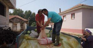 Manisa'da bir çiftçi karpuzdan pekmez yaptı