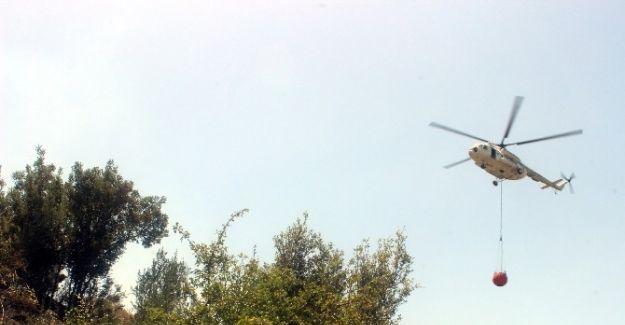 Salihli'de Orman Yangın