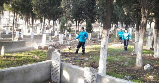 Mezarlıklarda ilaçlama çalışmaları