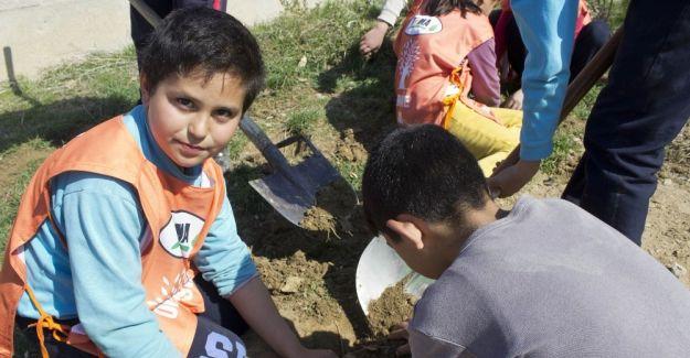 TEMA gönüllüleri Orman Haftasını kutladı