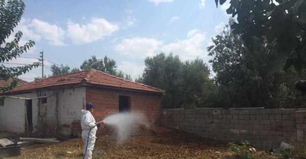 Büyükşehir sinek ve haşerelerle mücadele ediyor