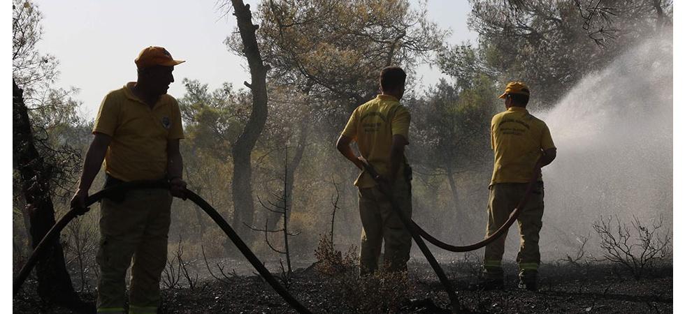 Manisa'da 50 dönüm ormanlık arazi zarar gördü