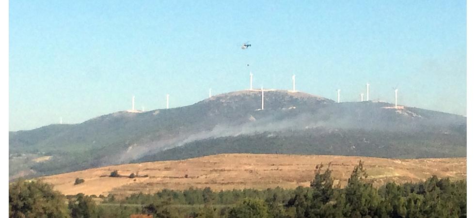 6 hektarlık ormanlık alan yangında zarar gördü