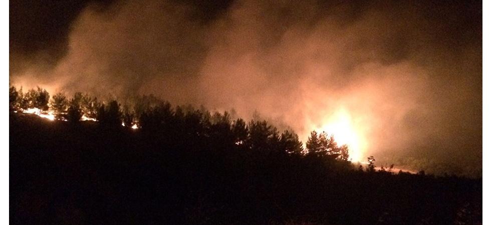 Manisa'da ormanlık alanda yangın çıktı