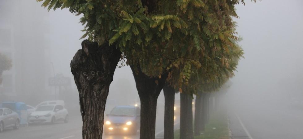Manisa güne sisle uyandı
