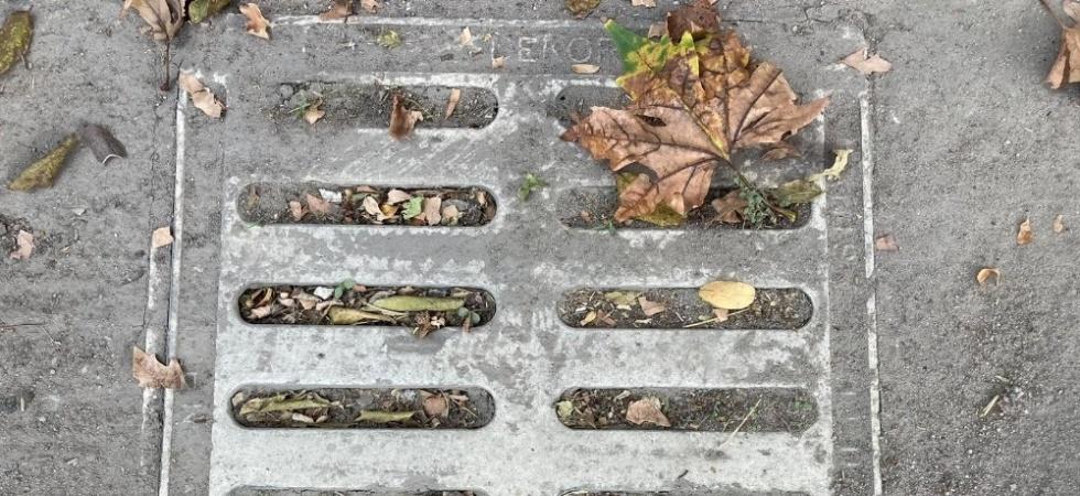 Yağmursuyu ızgaralarına atılan çöpler, su birikintilerine neden oluyor