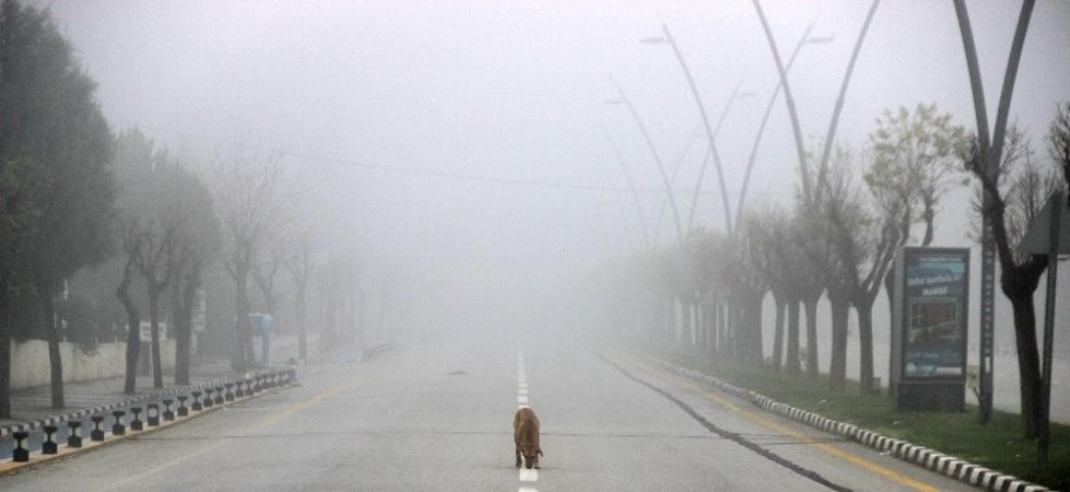 Manisa kısıtlamanın son gününe sis içinde uyandı
