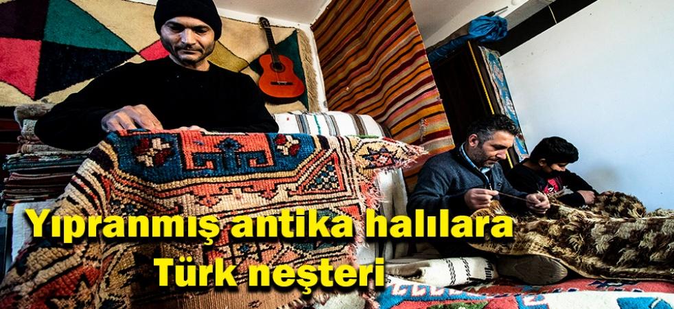 (Özel) Yıpranmış antika halılara Türk neşteri
