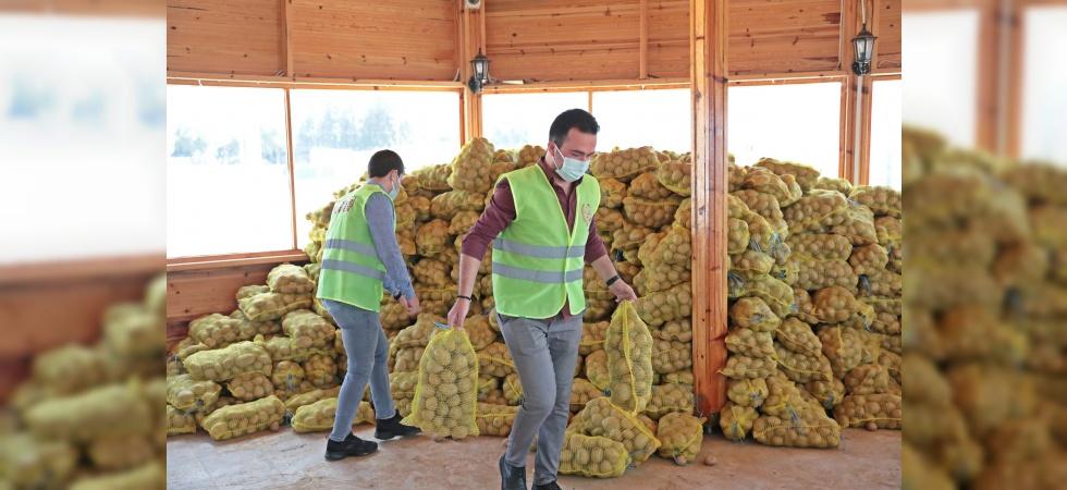Akhisar Belediyesi, ihtiyaç sahiplerine ücretsiz patates dağıtıyor