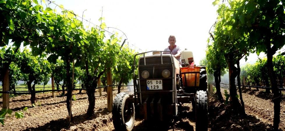 Çiftçiler Türkiye için üretmeye devam ediyor
