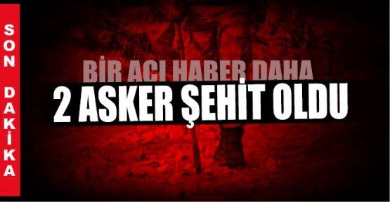 Mehmetçik'e mayın tuzağı :2 Şehit