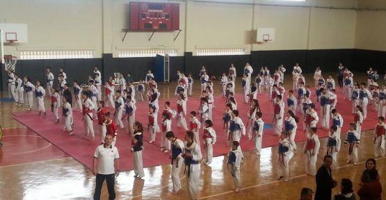 Minik Taekwondocuların ortak heyecanı