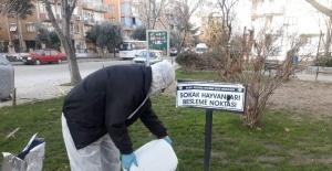 Salihli'de sokak hayvanlarına mama desteği