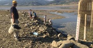 Manisa'da baraj suları tahliye edilince balıklar telef oldu