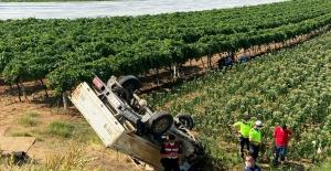 Tütün tarlasına uçan araçtaki kadın öldü, eşi ağır yaralandı