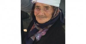 Sokak köpeği, yaşlı kadının yüzünü parçaladı